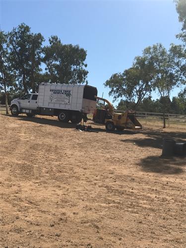Estates Tree Service Truck