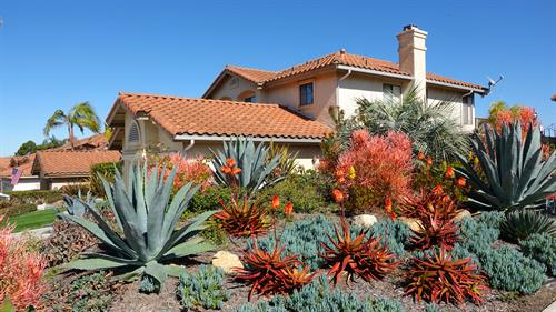 LANDSCAPE REMODEL SAN DIEGO 92122 NEED FOR BUILD