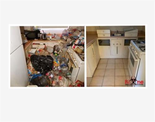 Hoarding Kitchen Clean Up