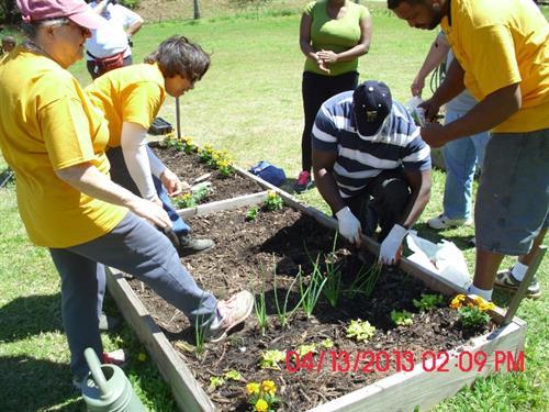 Gallery Image Diane_Langston_2-_Community_Garden_Club.jpg