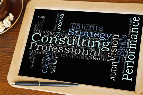 Industry subject matter expertise and management consulting experience to provide a more comprehensive solution and higher quality of consulting service delivery.
