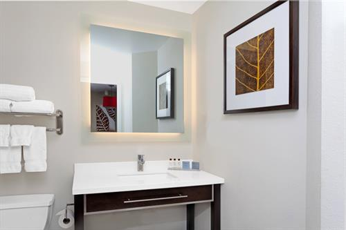 One Bedroom Suite Standard with Vanity