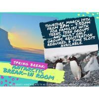 Spring Break: Antarctic Break-In Room for Adults & Teens