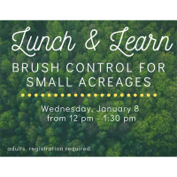 Lunch and Learn - Brush Control for Small Acreages
