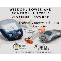 Wisdom, Power and Control: A Type 2 Diabetes Program