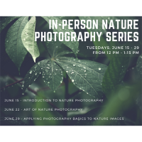 In-Person: Nature Photography Series