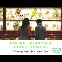 Online - Blaschka Glass Flowers