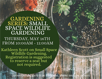 Gardening Series: Small Space Wildlife Gardening