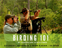 Birding 101 at Guadalupe River State Park