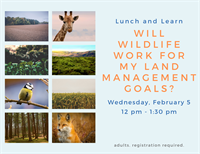 Lunch and Learn - Will Wildlife Work for my Land Management Goals?