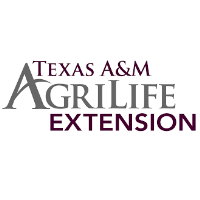 Extension Office conducts spring classes, workshops