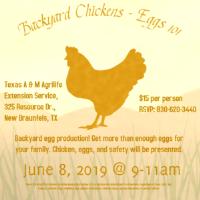 DIY Saturday to focus on backyard chickens, eggs