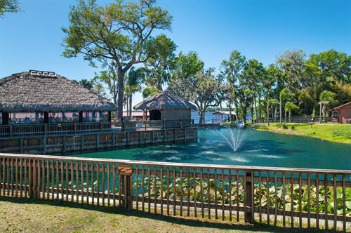 Tiki Pond