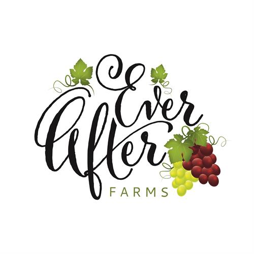 Ever After Farms Vineyard