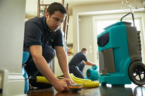 Our  expert Technicians are certified in water clean up and removal.
