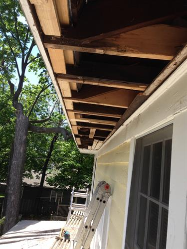 Wood rot repairs. Handyman services.