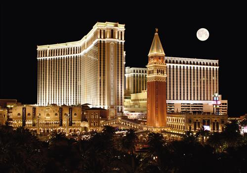 Venetian Hotel, Resort & Casino, Las Vegas, Nevada - Expert Witness