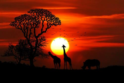 Or better yet...a safari and some of the most incredible sceneries you've ever seen?