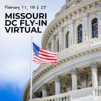 Missouri DC Fly-In - Virtual