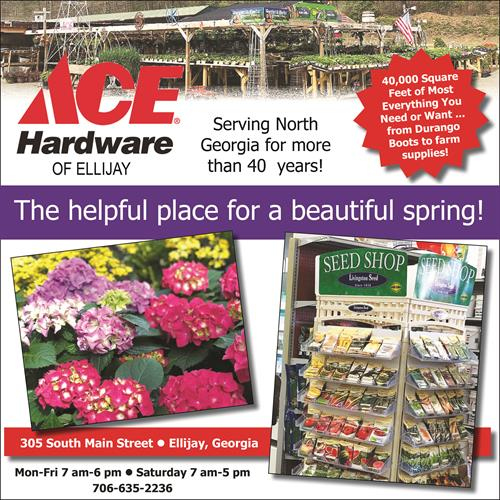 Ace Hardware of Ellijay