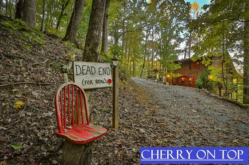 2BR/2BA charming mountain top cabin. Pet-Friendly. New to Blue Sky 10/30/19
