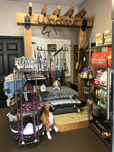Food, treats, gear and more