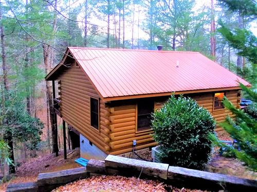 Private Cabin Overlooking Chattahoochee National Forest