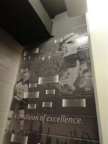 Colorado Eagles Vinyl Wall Graphics