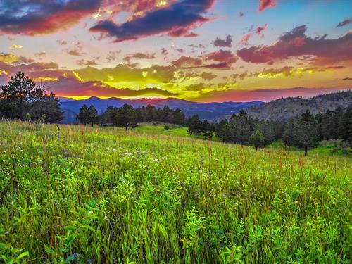 Bishop Ranch - West of Fort Collins