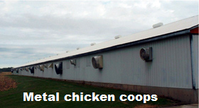 Good enough for a chicken coop...should be good enough for YOU.