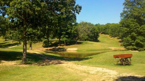 Walking Trails & Ponds