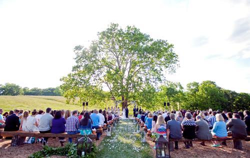 Spring Wedding - FourThirteen Photography