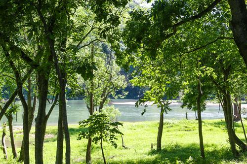 Condos with lakeside views