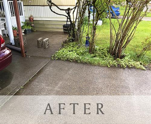 After Pressure Washing Service
