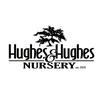 Hughes & Hughes Nursery