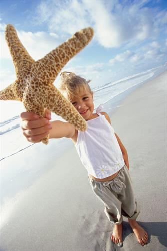 Gallery Image child_with_starfish.jpg