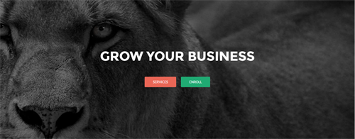 Let's Grow Your Business On Google