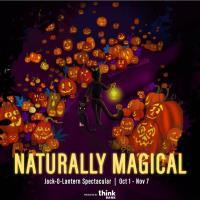 Jack-O-Lantern Spectacular!