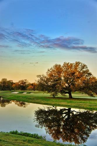 Gallery Image Bayou_Oaks_at_City_Park_South_Course_8.jpg