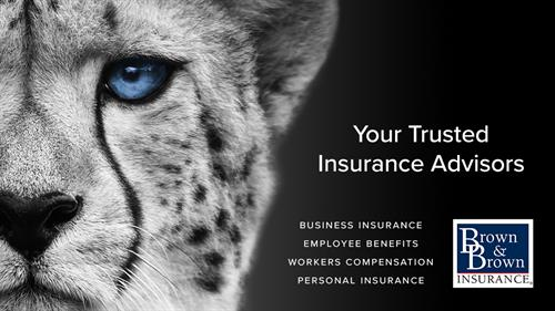 Your Trusted Insurance Advisors