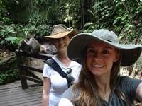 Monkey Forrest in Bali!