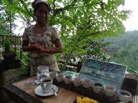 Luwak Coffee Plantation- Bali