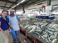Fish Market in Abu Dhabi, United Arab Emirates