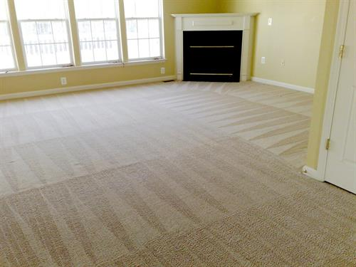 8 - step Superior Carpet Cleaning Service completion