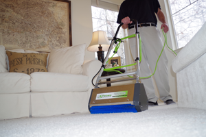 Brush Pro Rotary Carpet Cleaning and Carpet Grooming