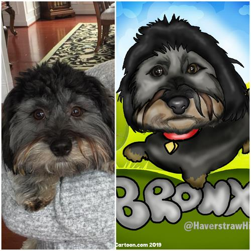 Digital Pet Caricatures