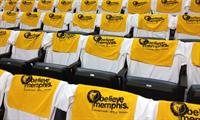 Yup! We do the Memphis Grizzlies SWAG too!