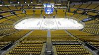 Can;t forget our beloved PREDS!! This is our GOLD out for them in the playoffs!