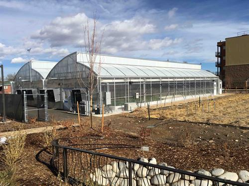 Aquaponics Farm at Mental Health Center of Denver