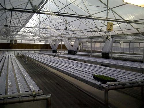 Hydroponics farm with climate battery